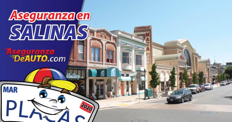 Aseguranza en Salinas | Auto Insurance in Salinas | Autos Insurance Car Insurance in Salinas CA | Seguro de Auto en Salinas